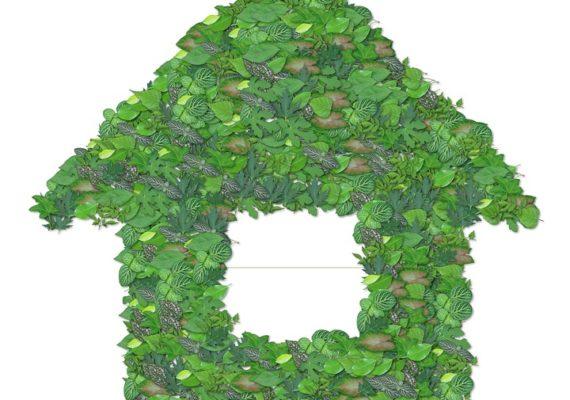 Immobilier écologique